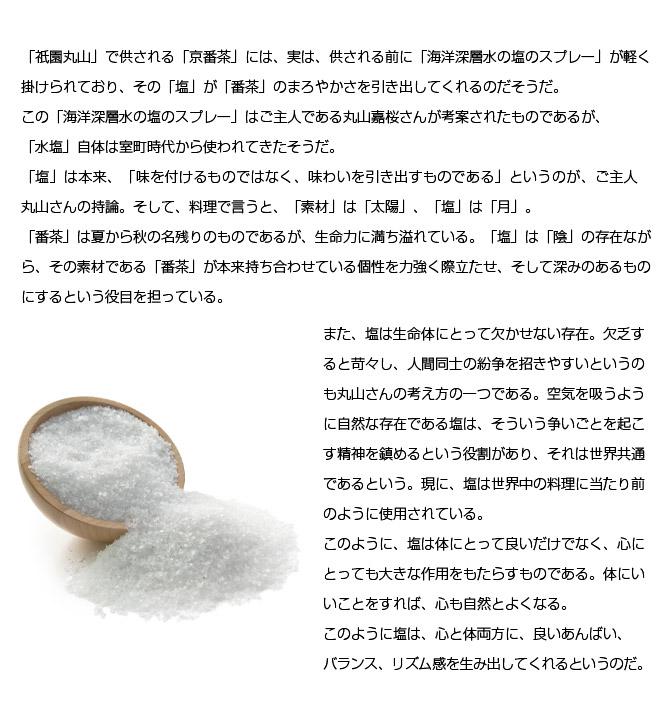 gion_maruyama_33_02