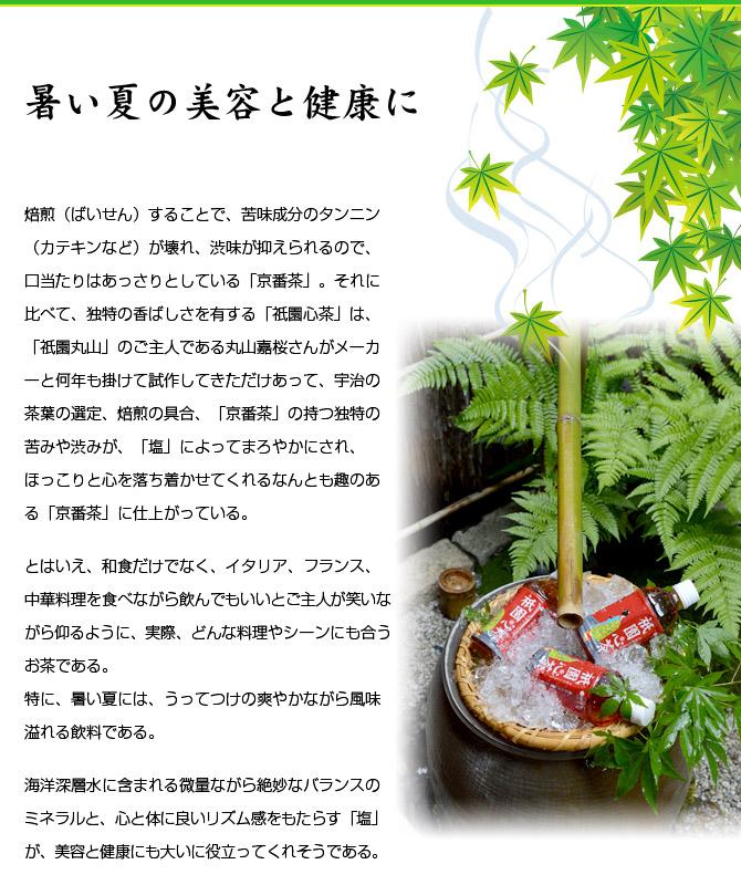 gion_maruyama_42