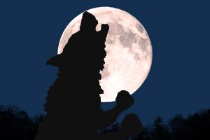 moon_05_pic_werewolf